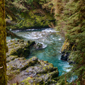 Quinault Graves Creek-25
